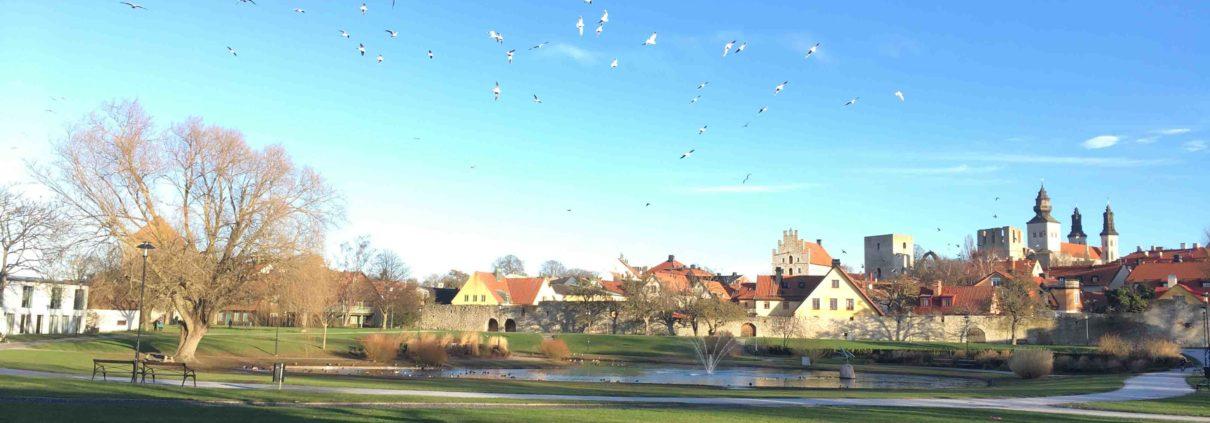 Almedalen Gotland - foto av Lovisa Moberg Science Park Gotland